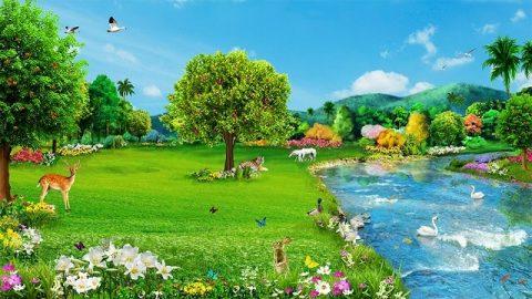 Власть Бога - Под руководством Творца все сущее безупречно