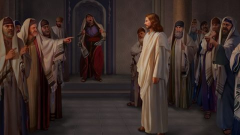 Pharisee accused the Lord Jesus