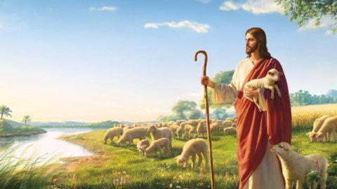 Как узнать, что Христос есть истина, путь и жизнь