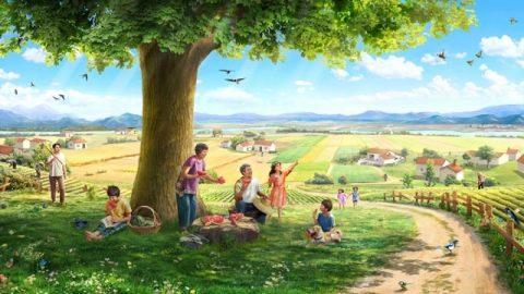 История. Семя, земля, дерево, солнечный свет, певчие птицы и человек
