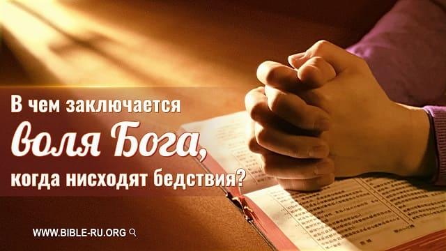 В чем заключается воля Бога, когда нисходят бедствия?